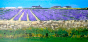 Lavender Holland Train Fields